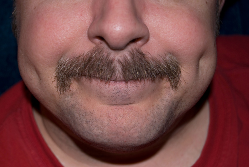 final-day-pokey-mustache-500